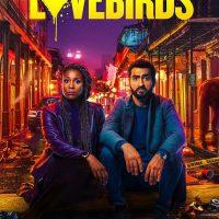 دانلود فیلم مرغ عشق ها با دوبله فارسی با لینک مستقیم و کیفیت عالی full HD